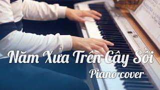 #5TC - Năm xưa trên cây sồi - Thánh Ca tuyển chọn - Piano cover by W.T.