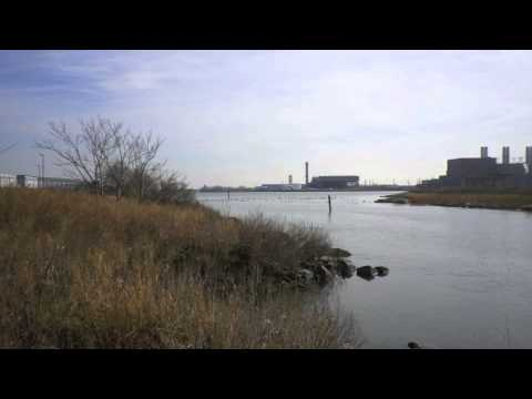 The Harlem River: Access and Advocacy in the Bronx
