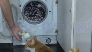 видео Встраиваемая стиральная машина Hotpoint-Ariston AWM 108