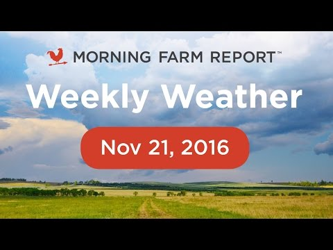 Morning Farm Report Weekly Ag Weather Video - Nov 21, 2016