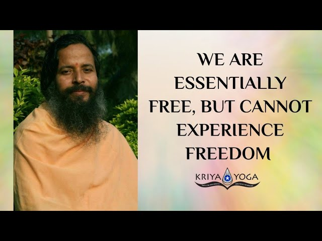 We Are Essentially Free, but Cannot Experience Freedom