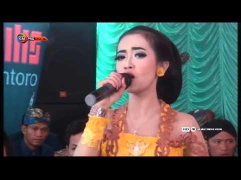 PURWO WILIS - Bojo Galak - Diaz Ayu - Live Ngerapah Setren Slogohimo 2017