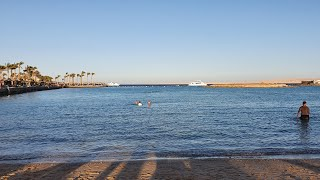 Прямой эфир из Египта Хургада Отель Arabia Azur Resort