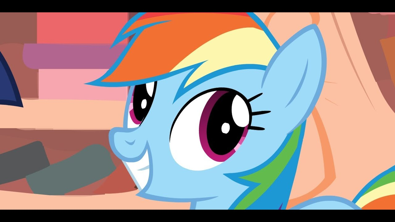 rainbow dash excited gif wwwpixsharkcom images