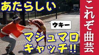 【曲芸】日光猿軍団も驚くマシュマロキャッチ!!