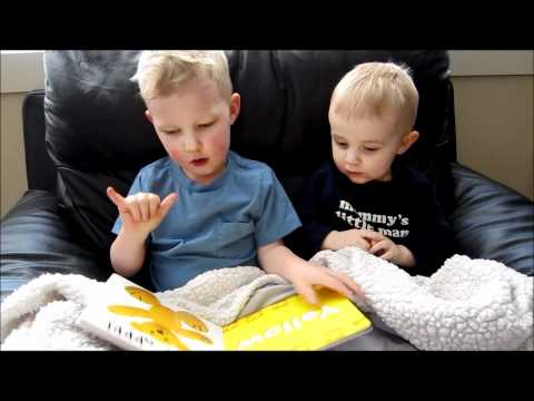 Three Year Old Reading to Little Brother Using Sign Language
