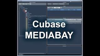 Налаштування Cubase MediaBay