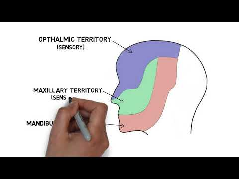 A condition that causes facial pain (TRIGEMINAL NEURALGIA).