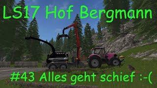 LS17 | Hof Bergmann | #43 Alles geht schief :-( #Holz häckseln