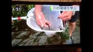 2015年8月25日、和光市の越戸川で毎年恒例となった、「越戸川ジャブ...