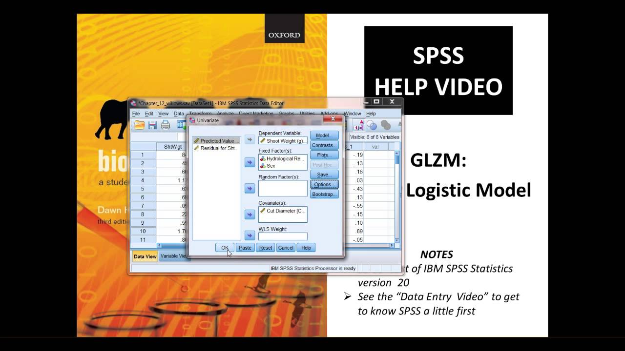 GLZM: General Linear Model (GLM) in SPSS