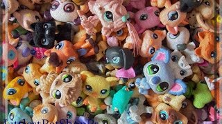 моя коллекция littlest petshop + фортуна