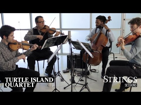 Strings Sessions: Turtle Island String Quartet