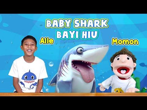 Download Baby Shark - Bayi Hiu I Alle & Momon