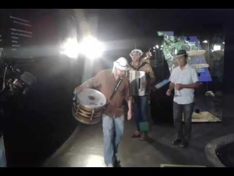 World music from northeastern Brazil / Salatiel D 'Camarão.