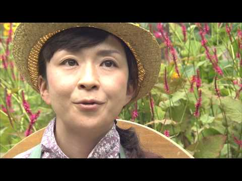 様々なテーマで北海道をゆったり楽しむ「極上のおとな旅」を紹介する動画コンテンツの完結編・第5話登場!