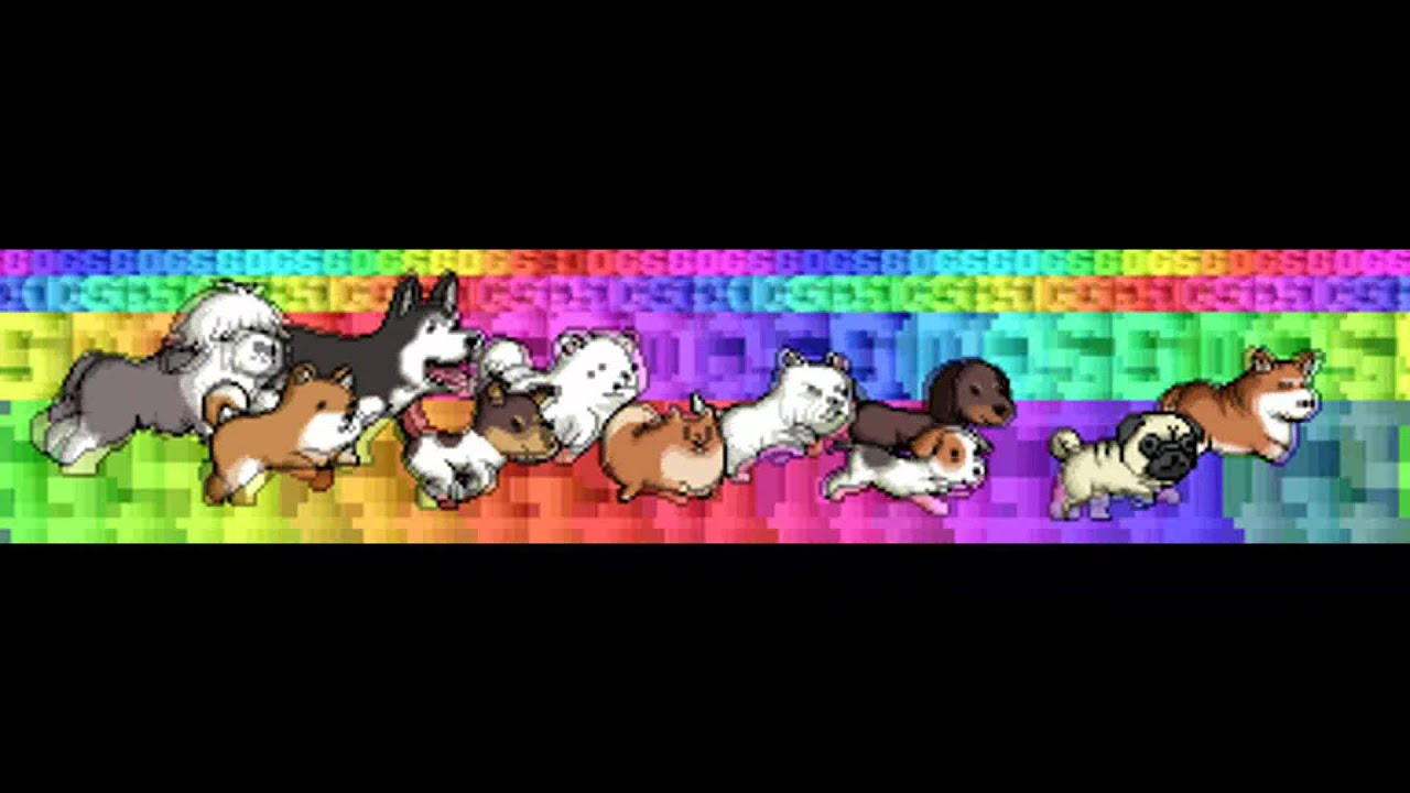 Animated Dj Wallpaper Rainbow Dogs Watch In Hd Youtube