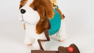 Видео обзоры игрушек - Собака на проводном пульте