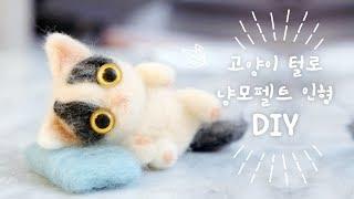 고양이 털로 냥모펠트 :DIY 쵸비인형