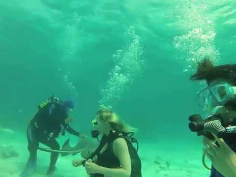 Cayman Island Scuba Apr 2013