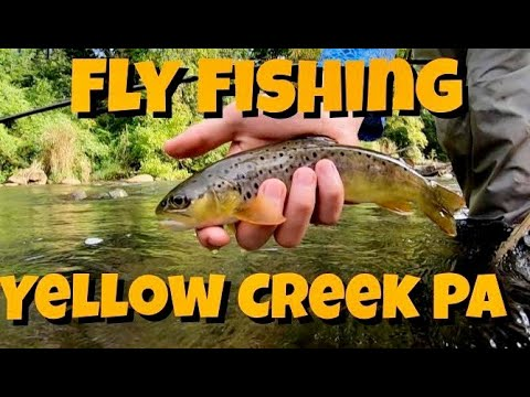 Fly Fishing Yellow Creek Pennsylvania