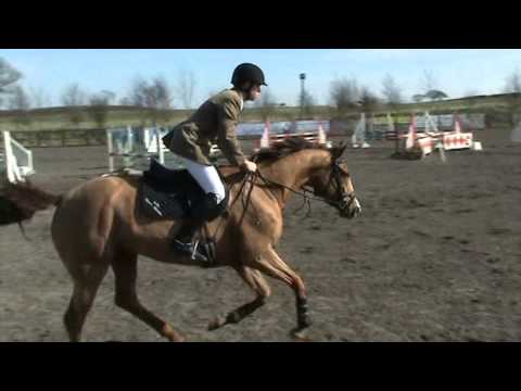 Jenny, BL Events, Brit Nov, double clear 2nd