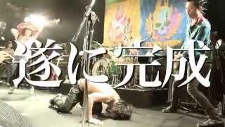 STANCE PUNKS 11月4日(水)発売 ニューアルバム「P.I.N.S」のトレーラー...