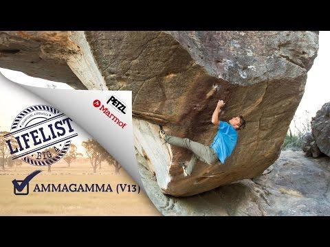 Big 4 - Ammagamma