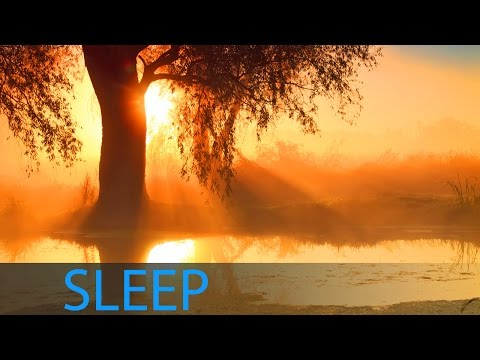 8 Hour Sleep Music for Insomnia: Delta Waves Sleep Meditation Music, Deep Sleep ☯228
