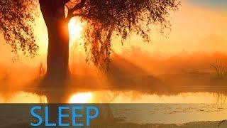 8 Hour Deep Sleep Music, Sleeping Music, Relaxing Music Sleep, Delta Waves, Sleep Meditation, ☯228