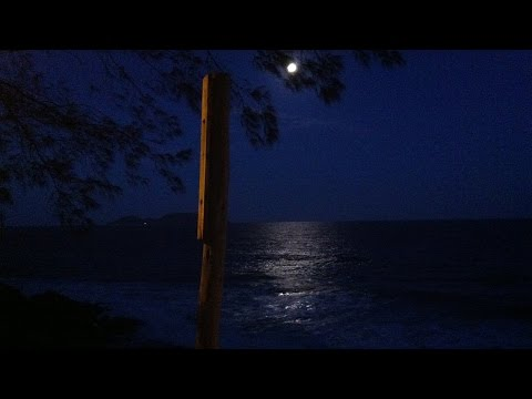 Relaxing Sounds of the Ocean in a Summer Night