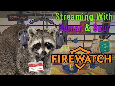 Homer & Sour Stream FireWatch