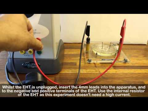 Electric field demo - with castor oil and semolina seeds