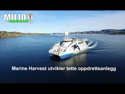 Marine Harvest utvikler tette oppdrettsanlegg