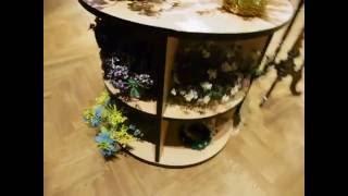 видео Выставка Дом-музей Г.В.Плеханова: расписание, цена билетов, фото — MySplash