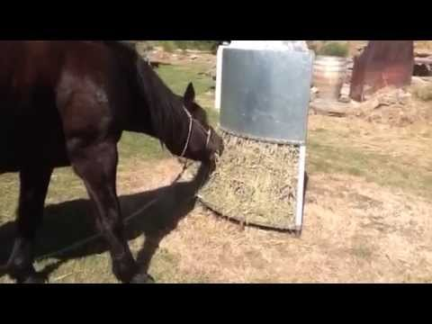 images horselogos horse diy best stables slow feeders permaculture pinterest stable stalls and barn on hay flip feeder