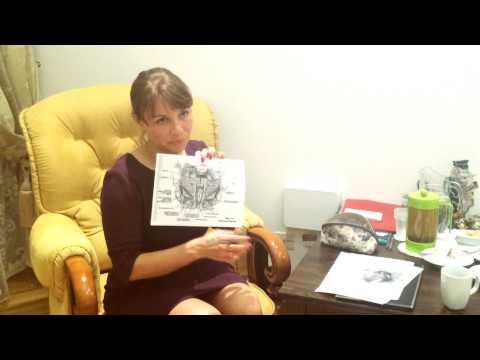 Лечение миомы матки: как лечить и где