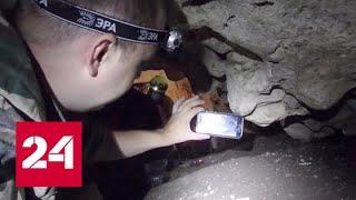 В Крыму обнаружен неизвестный вид микроорганизмов - Россия 24
