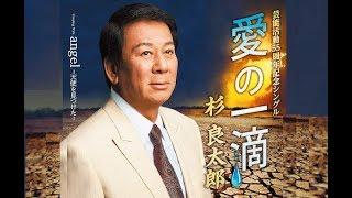 愛の一滴(杉良太郎)cover:水野渉