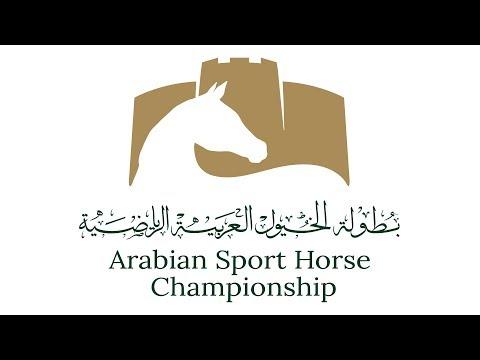 Arabian Sport Horse Championship, Saturday 7th April, 2018