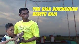 Download Video TUKIKAN JEDOR Beger Tak Bisa Dipandang Sebelah Mata | Merpati Kolong Brebes MP3 3GP MP4