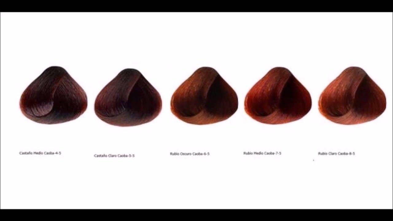 Baño Color Rojo Pelo:Ojo Humano Wikipedia La Enciclopedia Libre
