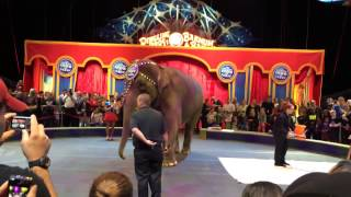 Elephant painting preshow at Ringling Brothers and Barnum & Bailey Circus: Legends