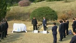 North and South Korean leaders plant ceremonial tree