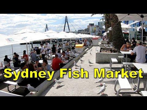 Sydney Fish Market - Sydney Australia
