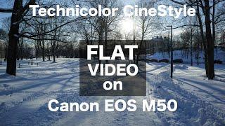 Flat video profile for Canon M50
