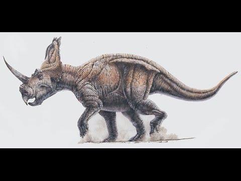 Centrosaurus | Enciclopedia sobre Dinosaurios