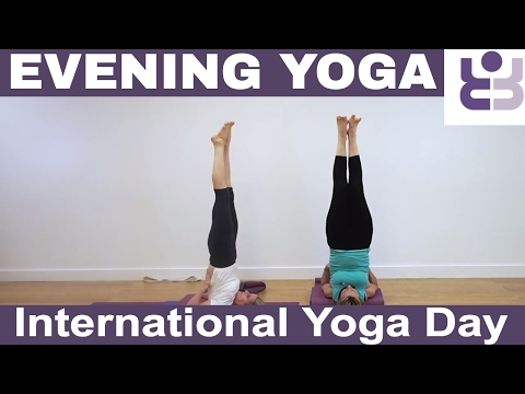 Evening Yoga Practice for International Yoga Day - Iyengar Yoga Sequence