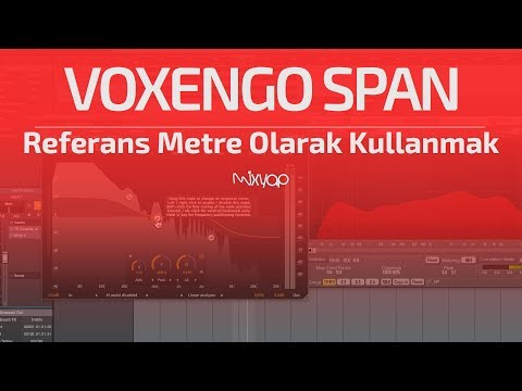 Voxengo SPAN'ı Referans Metre Olarak Kullanmak