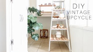 DIY Ladder Shelf + Plant Stand